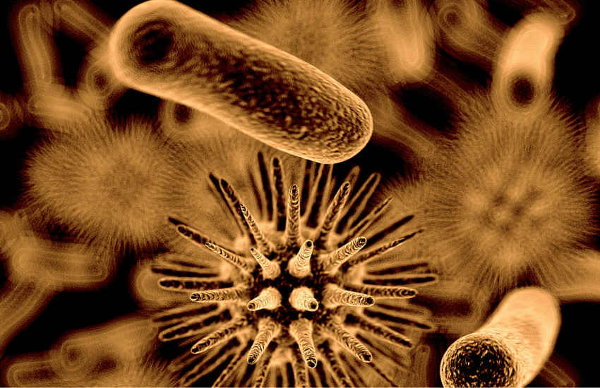 Bacteria - legionella - ACR Journal