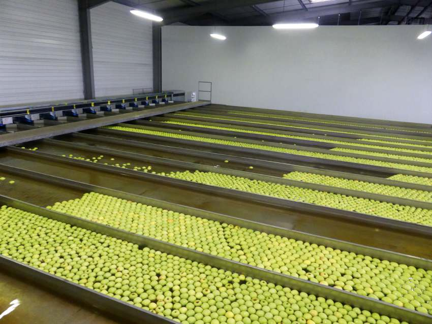 fruit france refrigerant F-Gas refrigeration Honeywell Solstice