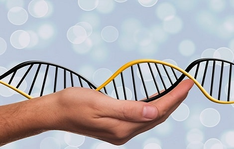 Choosing-DNA-test-72134.jpg