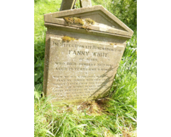 Fanny-White-of-Risby-at-Walesby-Church,-Lincolnshire---don't-overlook-unmarried-relatives-on-your-tree.-Their-memorials-can-provide-useful-information-too-62328.JPG