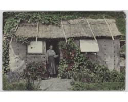 Frederica-Bell,-Denham-Bay,-Raoul-Island,-Kermadec-Islands-72146.jpg