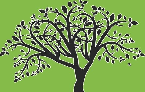 How-to-make-a-family-tree-09190.jpg