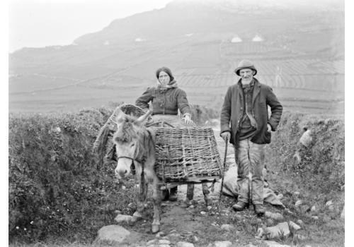 Irish-family-history-13459.png