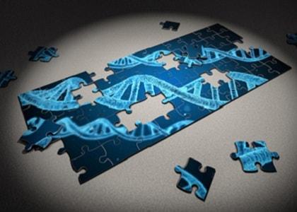 Understanding-geneaology-test-results-56047.jpg