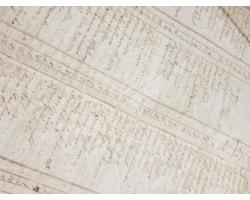 detail-dunbar-tax-roll-1713-47322.jpg