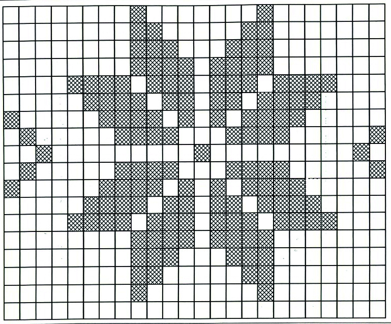 21 Once the grids are dry, start with the needlepoint technique. Use this pattern as your reference.
