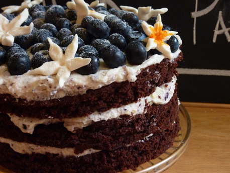 blueberry chocolate cake 458