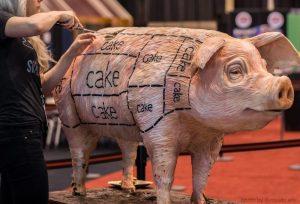 cropped-cerdo