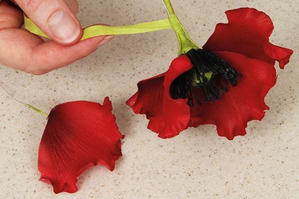 Sugarpaste poppies step 21