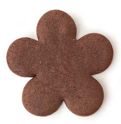 Chocolate gingerbread cookie