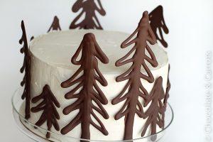 chocolate-raspberry-forest-cake-