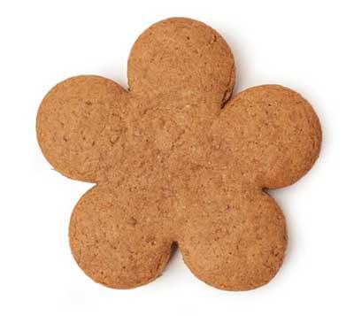 Dark treacle gingerbread cookie