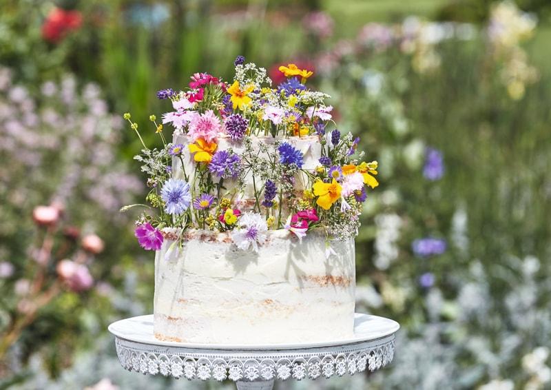 Gooseberry and elderflower cake
