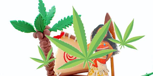 Marijuana' birthday cake confusion