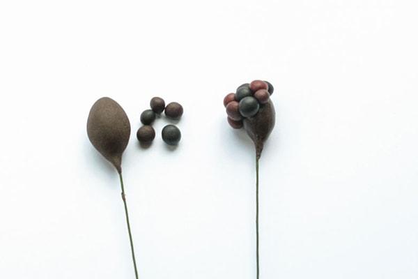 Modelling Blackberries step 3