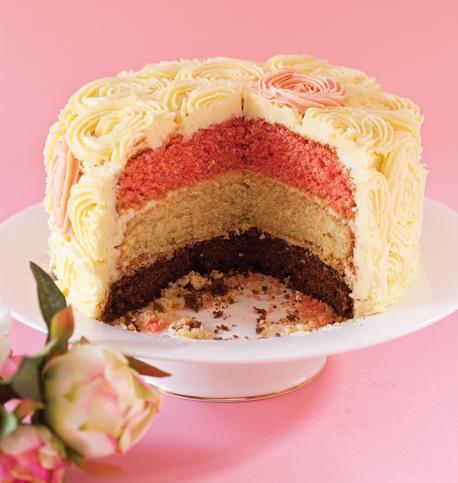 Neopolitan cake main 458