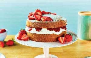 victoria sandwich cake sponge