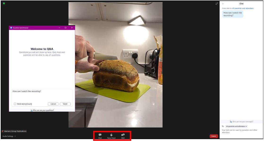 Zoom webinar screenshot