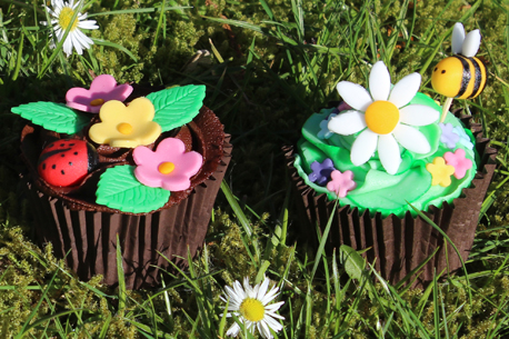 bee and ladybird cupcakes 458