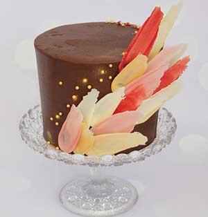 Chocolate feathers cake