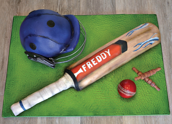 cricket bat cake with edible mossy grass