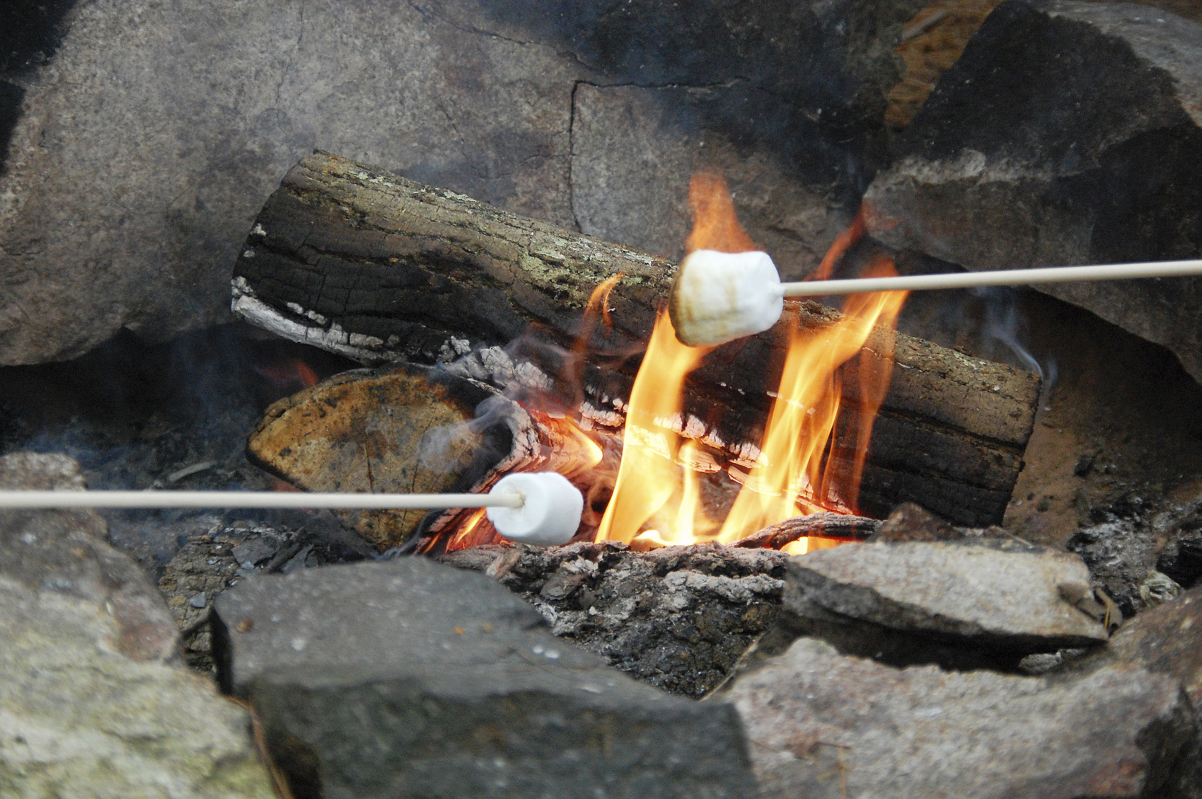 Two people roasting marshmallows on a campfire.