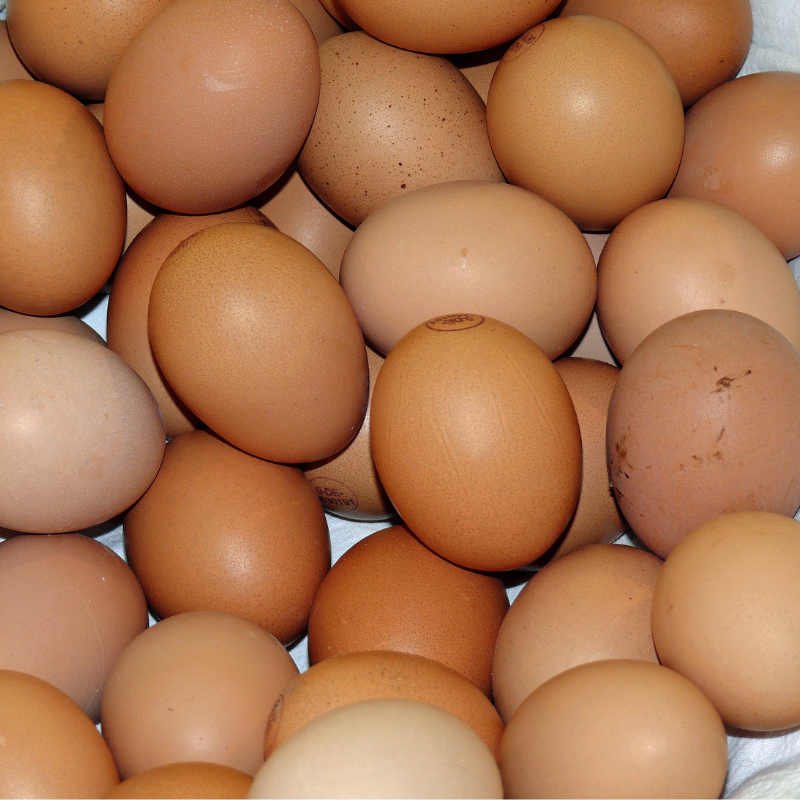 Pile of eggs
