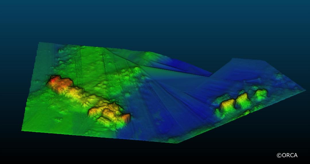 HMS-Pheasant--Multibeam-Echosound-Image.-Copyright-ORCA-19003.png