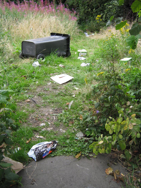 garden-14252.jpg
