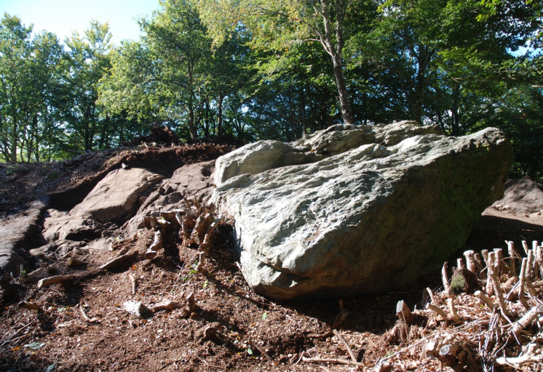 kings-seat-rock-trench-2-in-background-copyright-AOC-30400.jpg