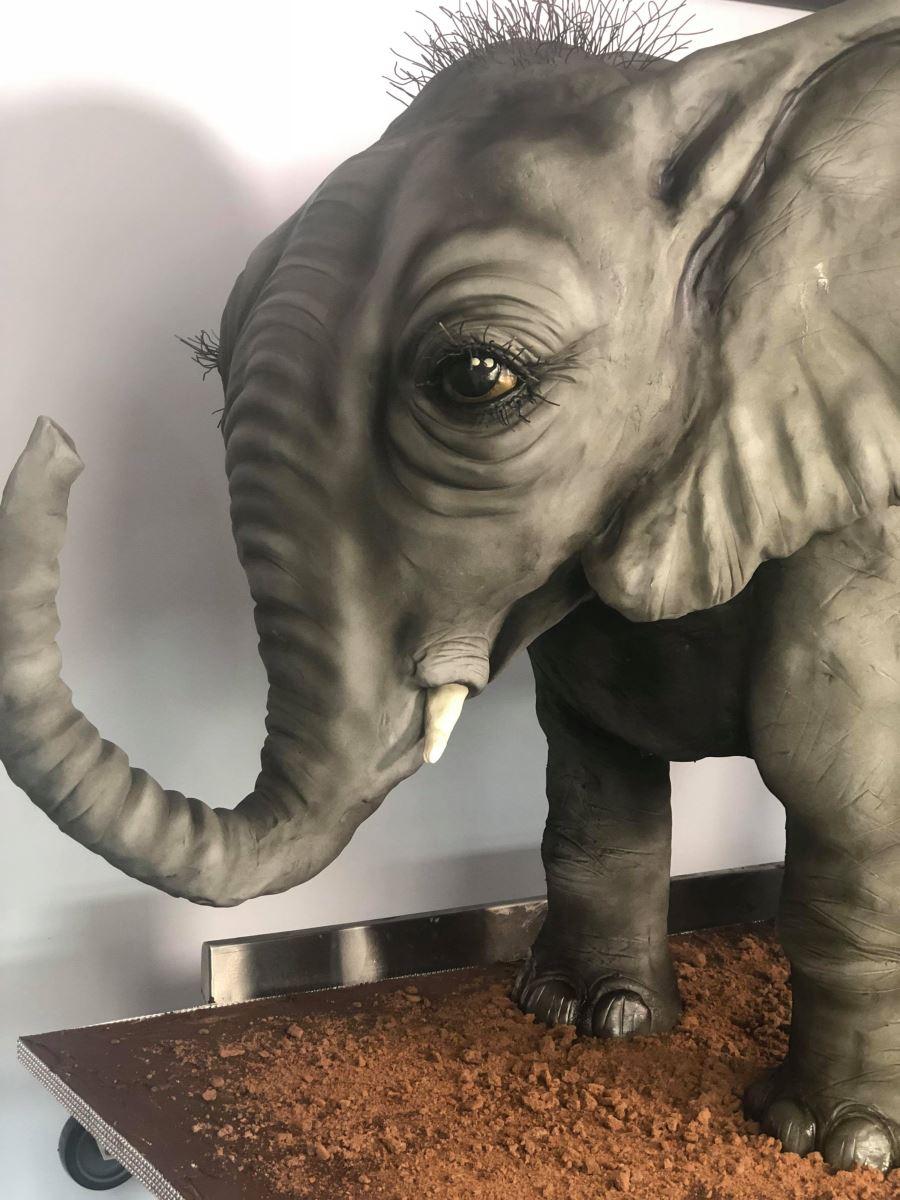 Molly Robbins elephant cake