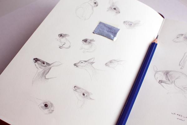 Chloe Giordano's nature-inspired sketches