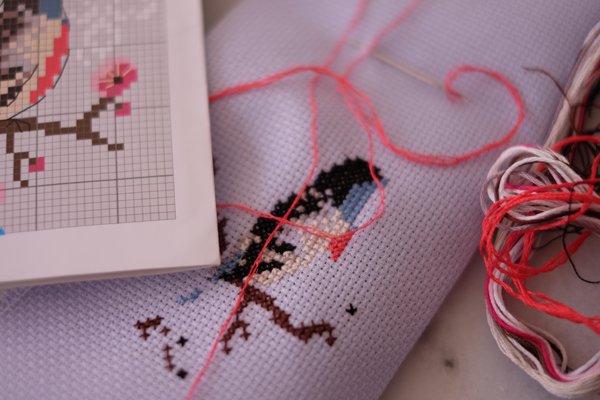 Following a cross stitch pattern with a cross stitch chart