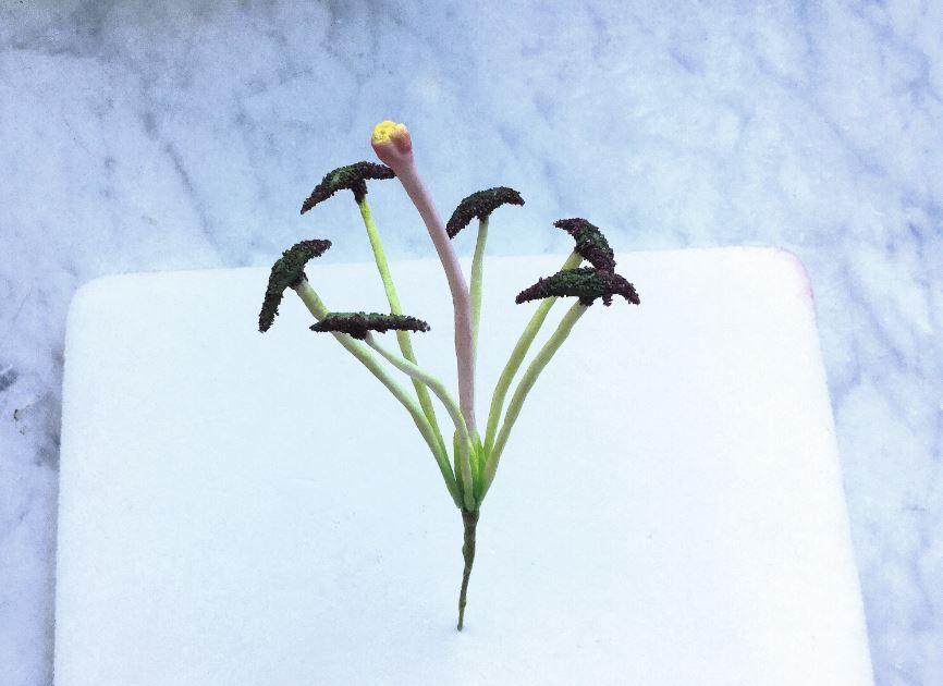 Sugarpaste Lily step 6