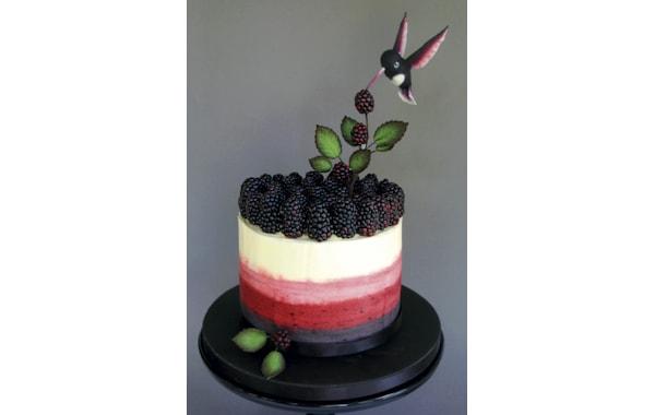 Ombre-Cake-47953.jpg
