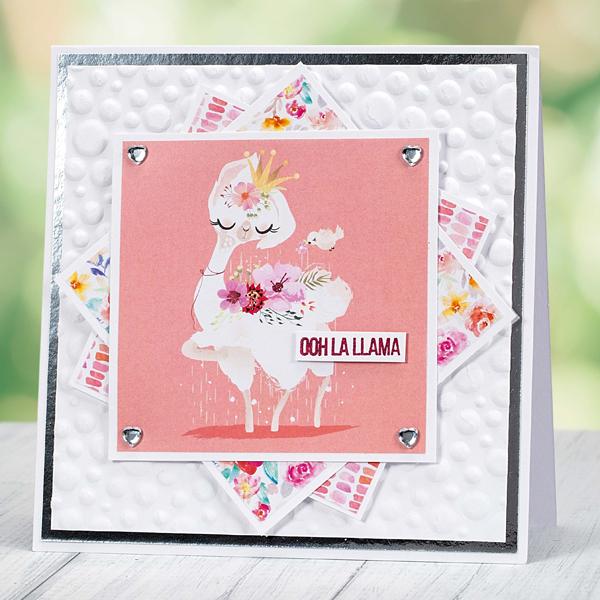 Ooh La Llama birthday card