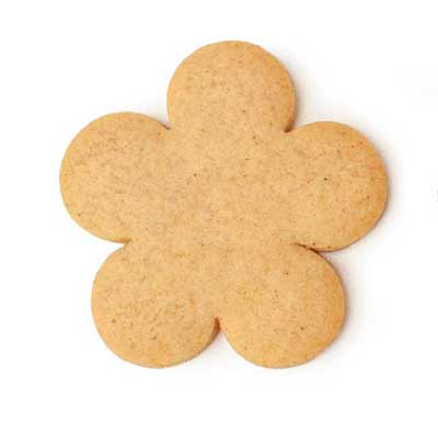 Pale Gingerbread Cookie