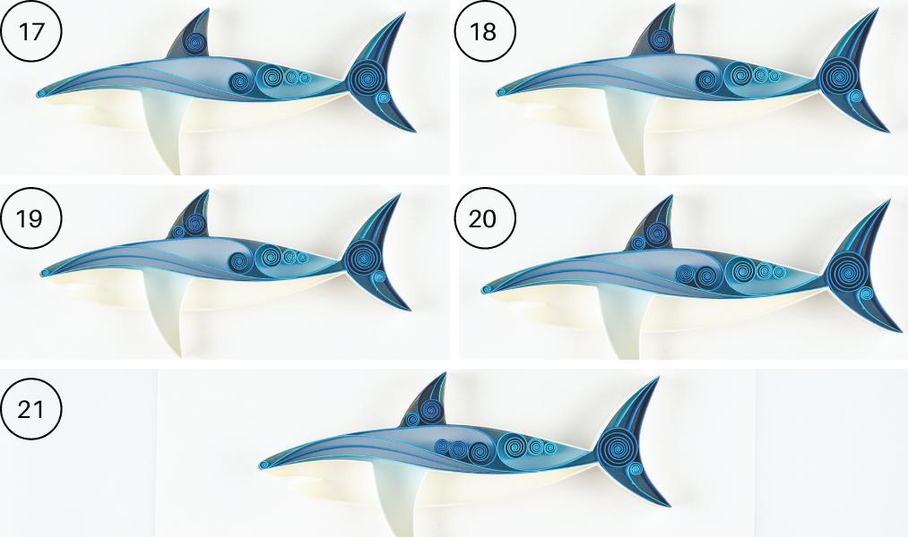 quilled shark steps 17-21