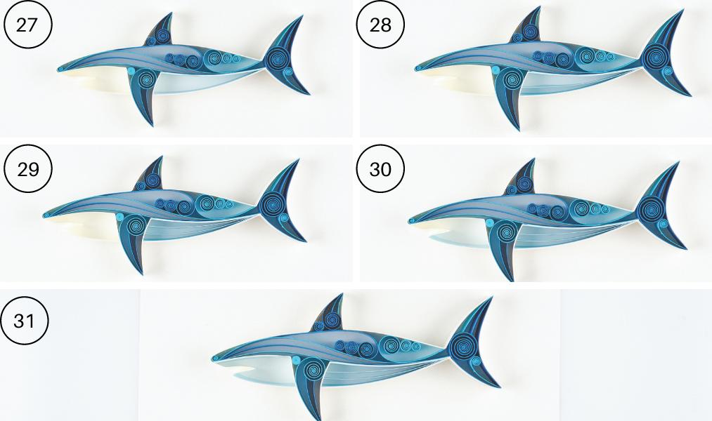 quilled shark steps 27-21
