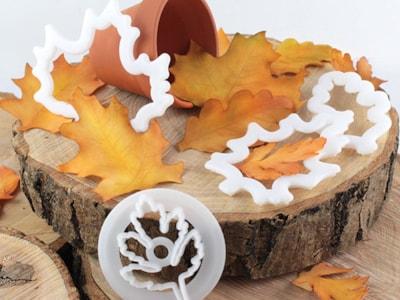 Seasonal-Leaves-04-09169.jpg