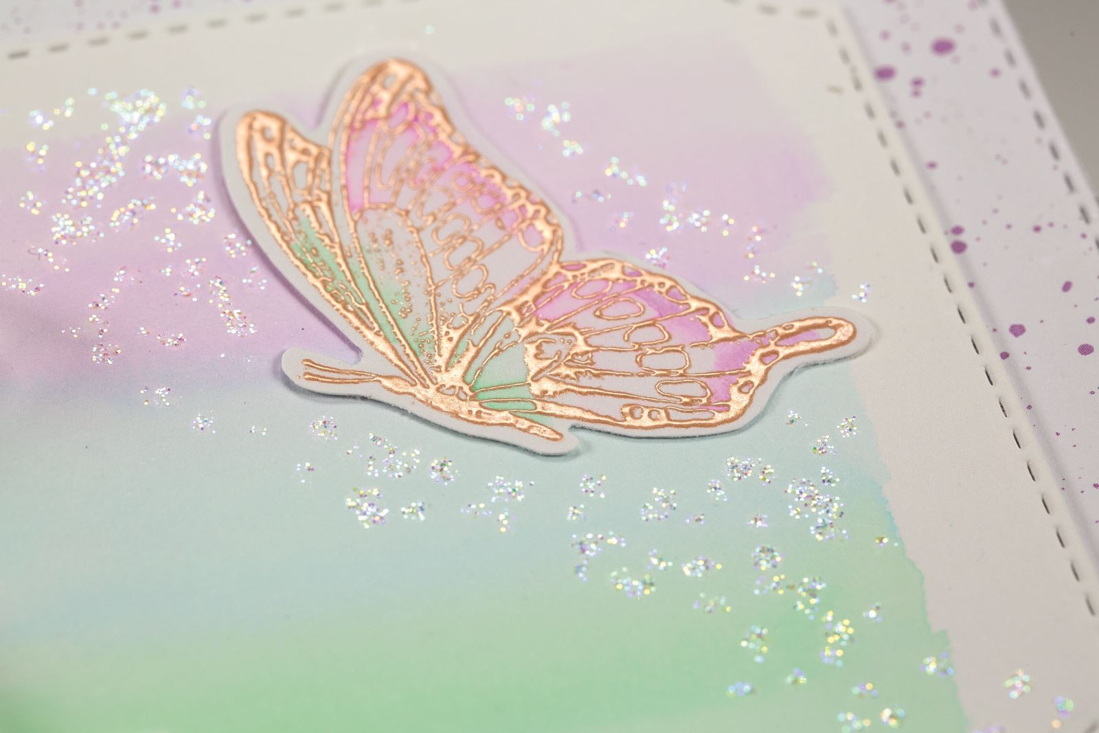 Close up butterfly card