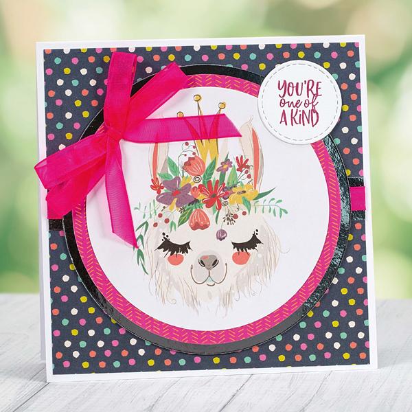 Youre One Of A Kind llama birthday card