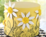 doodle-daisies-cake-by-lindy-smith