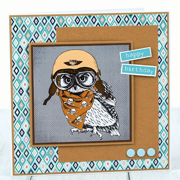 biker owl birthday card for him