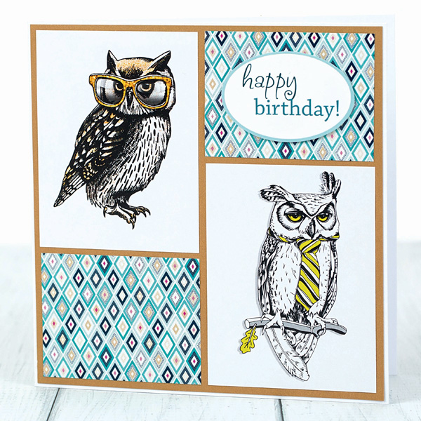 Owl wearing glasses birthday card for him
