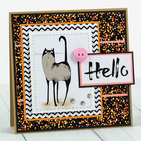 hello-cat-card