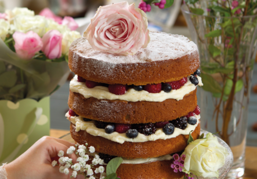 naked-berry-cake-06501.PNG