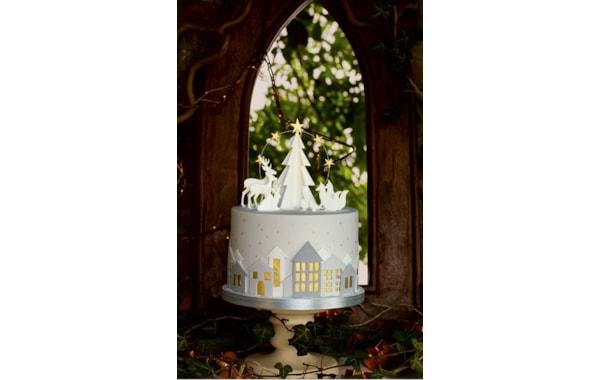 natalie-christmas-cake-12666.JPG