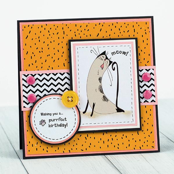 purfect-birthday-cat-card