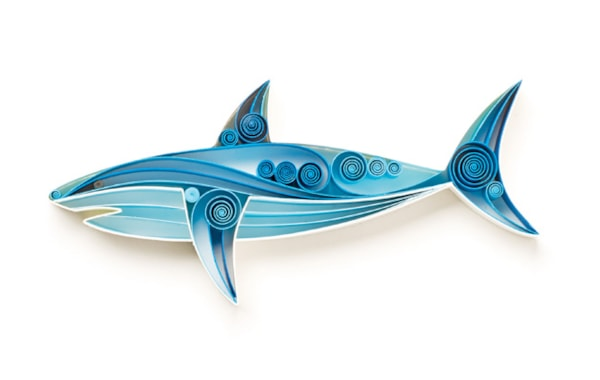 Quilled paper shark